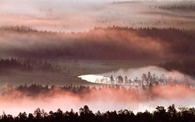 Utsikt Vitbergen